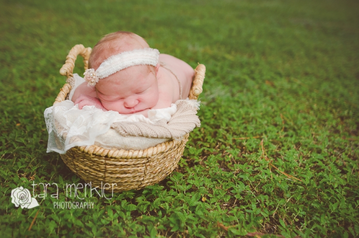 Turner Newborn Tara Merkler Photography Web-36