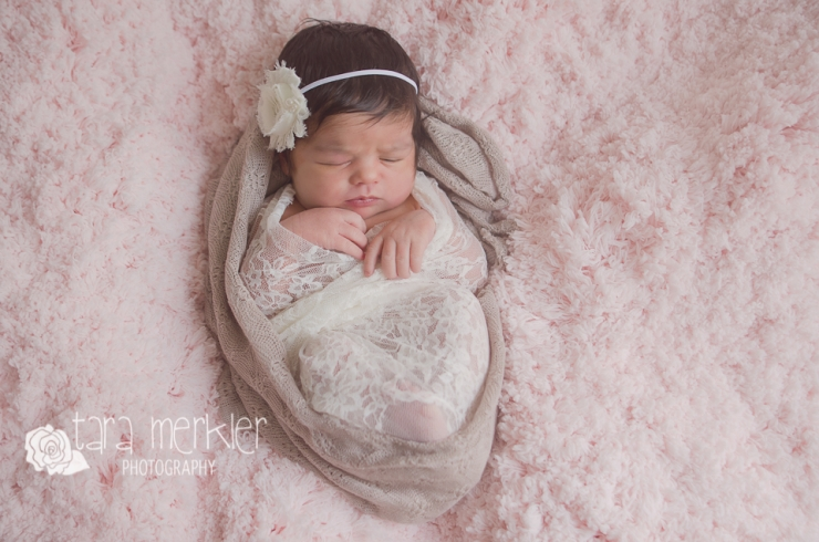 Penelope Newborn Session Web Tara Merkler Photography-1