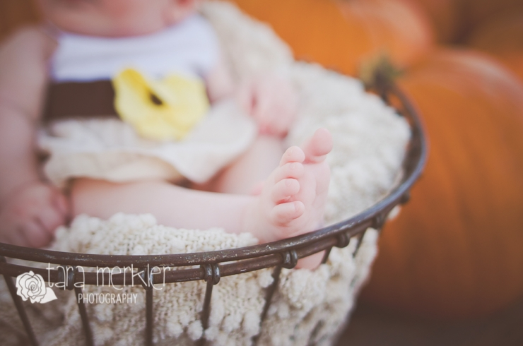 Web Kyleigh Pumpkin Mini Session Tara Merkler Photography-4