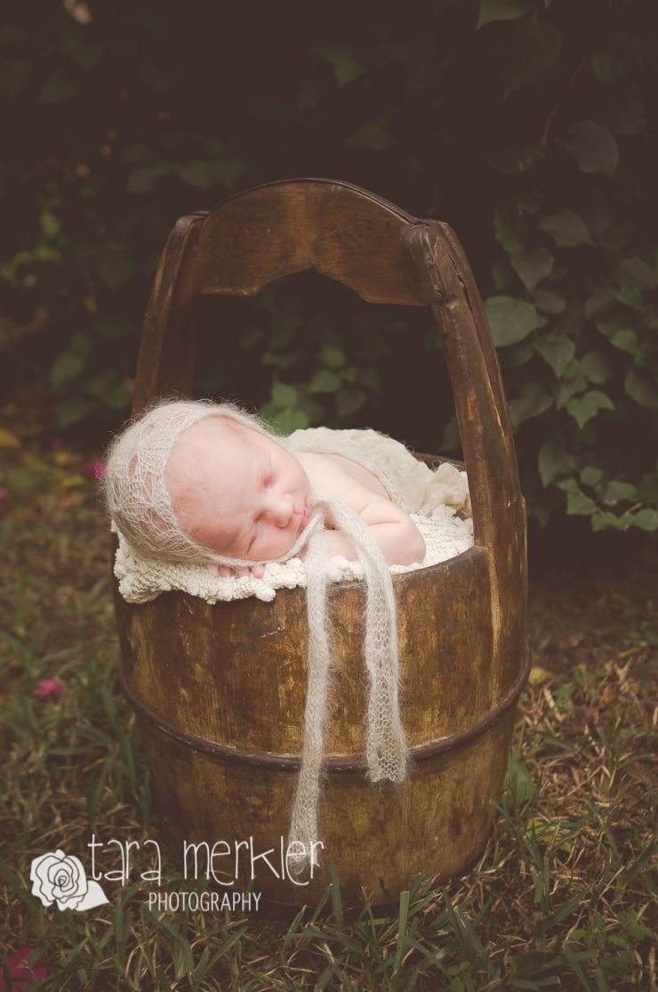 Web Coddington Newborn Session Tara Merkler Photography-1