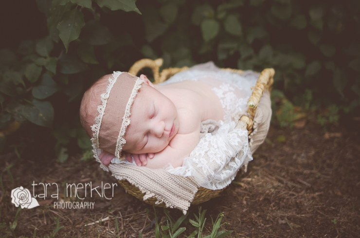 Web Coddington Newborn Session Tara Merkler Photography-42