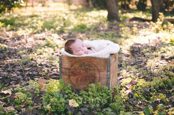 Orlando Florida Newborn Photographer