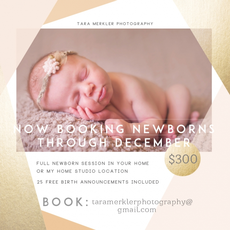 Orlando, Florida Newborn Booking Announcement Sep 2014