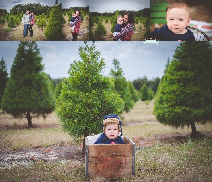 Tree Farm Christmas Holiday Mini Sessions 2014 Tara Merkler Photography Lake Mary, Florida Family Photography Central Florida_0017.jpg