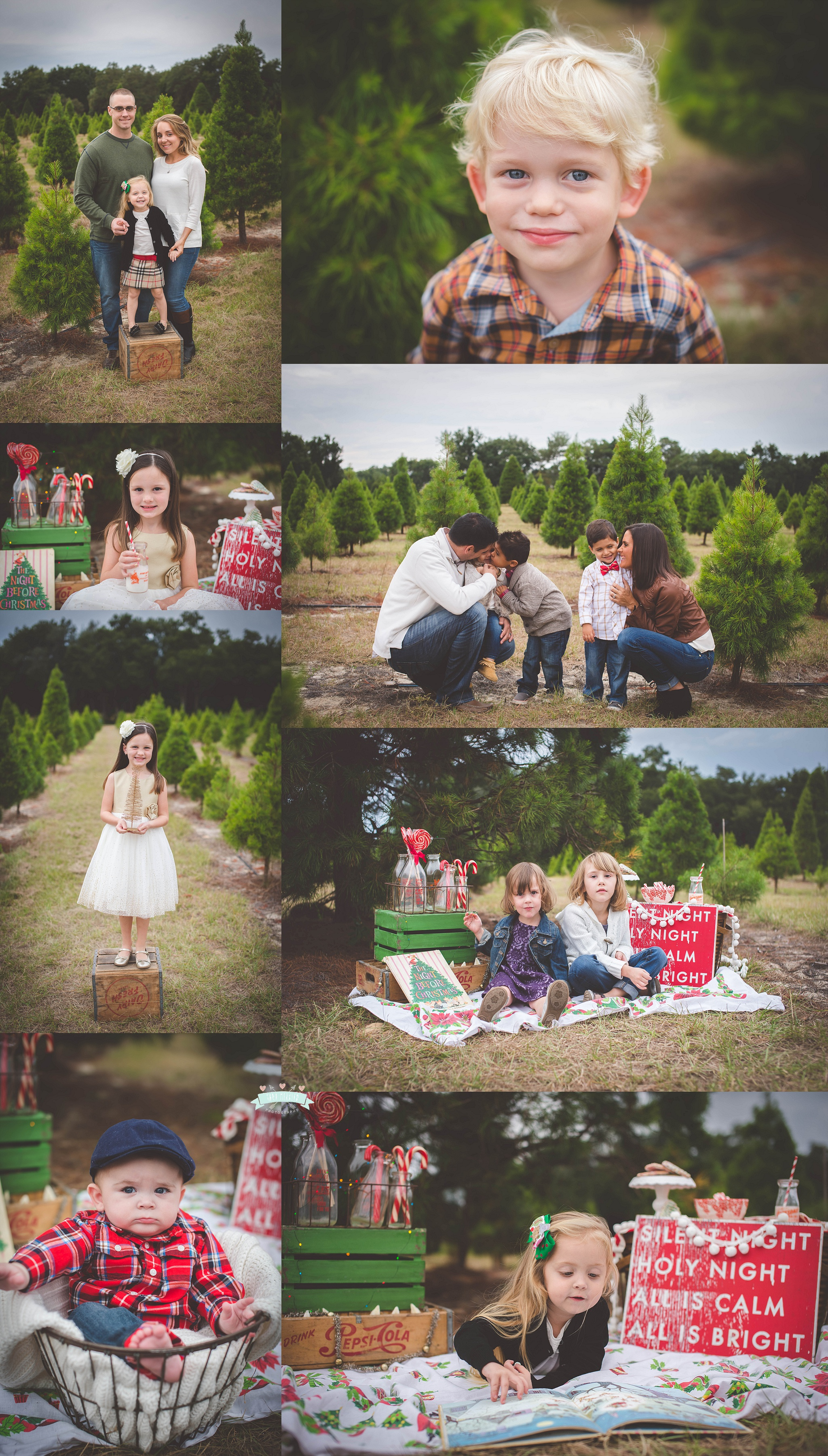 Christmas Tree Farm Photography.Christmas Tree Farm Mini Sessions 2014 Lake Mary Florida