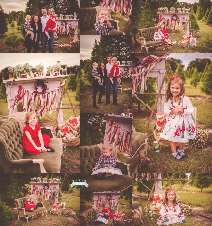 DiNisio Family Tree Farm Family Session 2015 Tara Merkler Photography-76_WEB.jpg